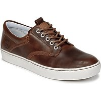 Timberland  ADVENTURE 2.0 CUPSOLE LEA  men's Shoes (Trainers) in Brown