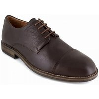 J.bradford  Derby  Brown Leather JB-CAD  men's Casual Shoes in multicolour