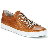 Blackstone  PM58  men's Shoes (Trainers) in Brown