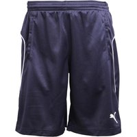 Puma Mens Poly Training Shorts Night Navy/White
