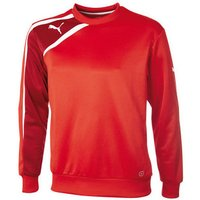 Puma  Spirit Sweat Top  men's Polo shirt in Other
