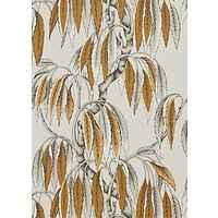 John Lewis & Partners Albero Wallpaper, Tiger's Eye