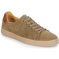 PLDM by Palladium  FLAG SUD  men's Shoes (Trainers) in Green