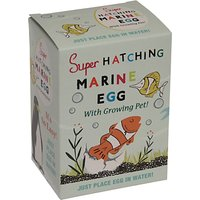 Rex London Super Hatching Marine Egg