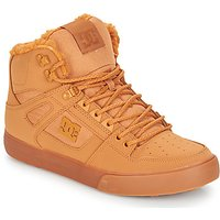 DC Shoes  PURE HT WC WNT M SHOE WEW  men's Shoes (High-top Trainers) in Brown