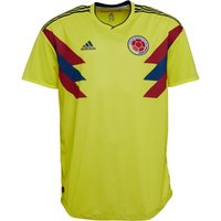 adidas Mens FCF Colombia Pre Match Shirt Bright Yellow/Collegiate Navy