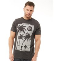 Kangaroo Poo Mens Palm Tree Print T-Shirt Charcoal Marl