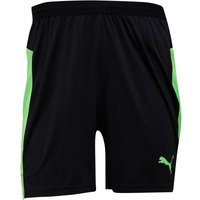 Puma Mens evoTRG DryCELL Training Shorts Puma Black/Green Gecko