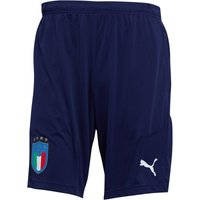 Puma Mens FIGC Italy Training Shorts Peacoat