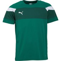 Puma Mens Football Spirit II Training Jersey Power Green/White