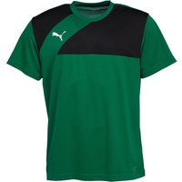 Puma Mens Esquadra Training Jersey Green/Black