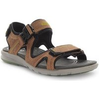 Ecco  Cruise  men's Sandals in Brown