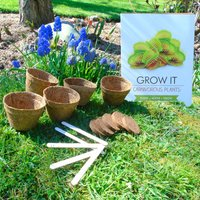 Grow Your Own Carnivorous Plants