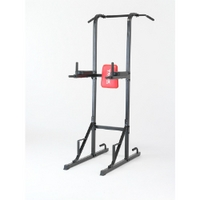 York Fitness - Workout Tower