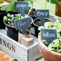 Garden Trading Greenhouse Slate Tags, Set of 6