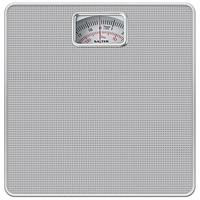 Salter 433 Mechanical Bathroom Scale