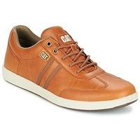 Caterpillar  SYNTAX  men's Shoes (Trainers) in brown
