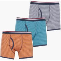 Pack Stripe Trunk - multi