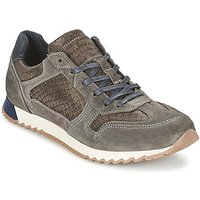 Mustang  TOLILA  men's Shoes (Trainers) in grey
